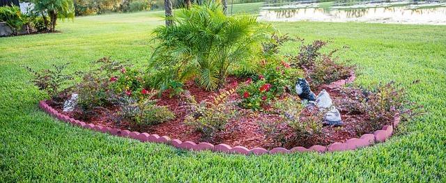 Your Summer Garden!