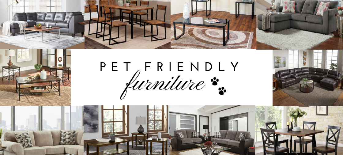 The Best Furniture for Pet-Friendly Homes